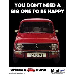 You Don't Need A Big One To Be Happy Mini Canvas Wall Art